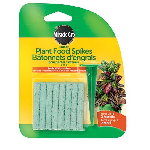 Bâtonnets d'engrais pour plantes d'intérieur 6-12-6 - Emballage de 31 g, 24 bâtonnets