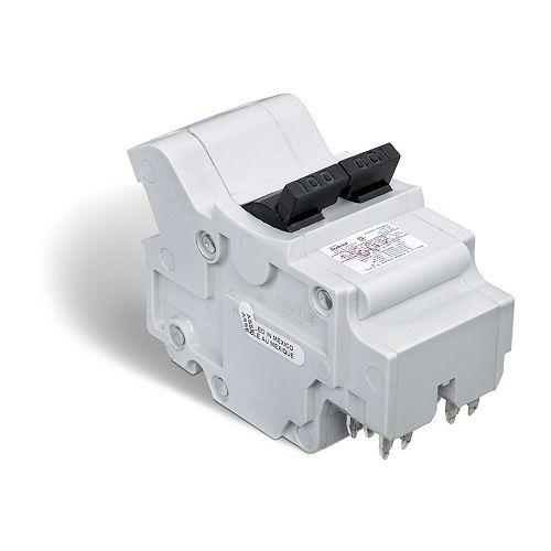 Schneider Electric Double Pole 100 Amp Stab-lok (NA) Plug-On Circuit Breaker