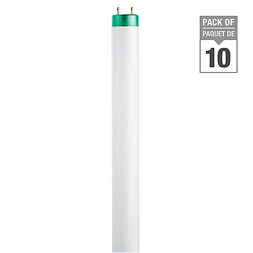 32W T8 48-inch Cool White (4100K)Fluorescent Light Bulb (10-Pack)