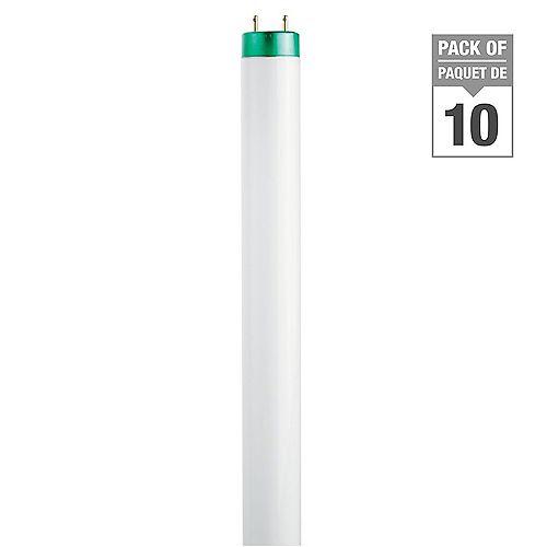 Philips 32WCool White 48 inch T8 FluorescentLight Bulb (10-pack)