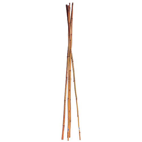 72-inch Bamboo