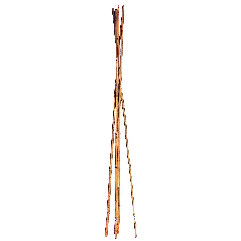 Select Select Tuteurs de bambou