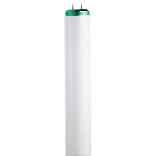 """Fluorescent 20W T12 24"""" Soft White (3000K)"""