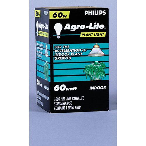 À incandescence pour plantes 60 W Lumière pour plantes 60 W