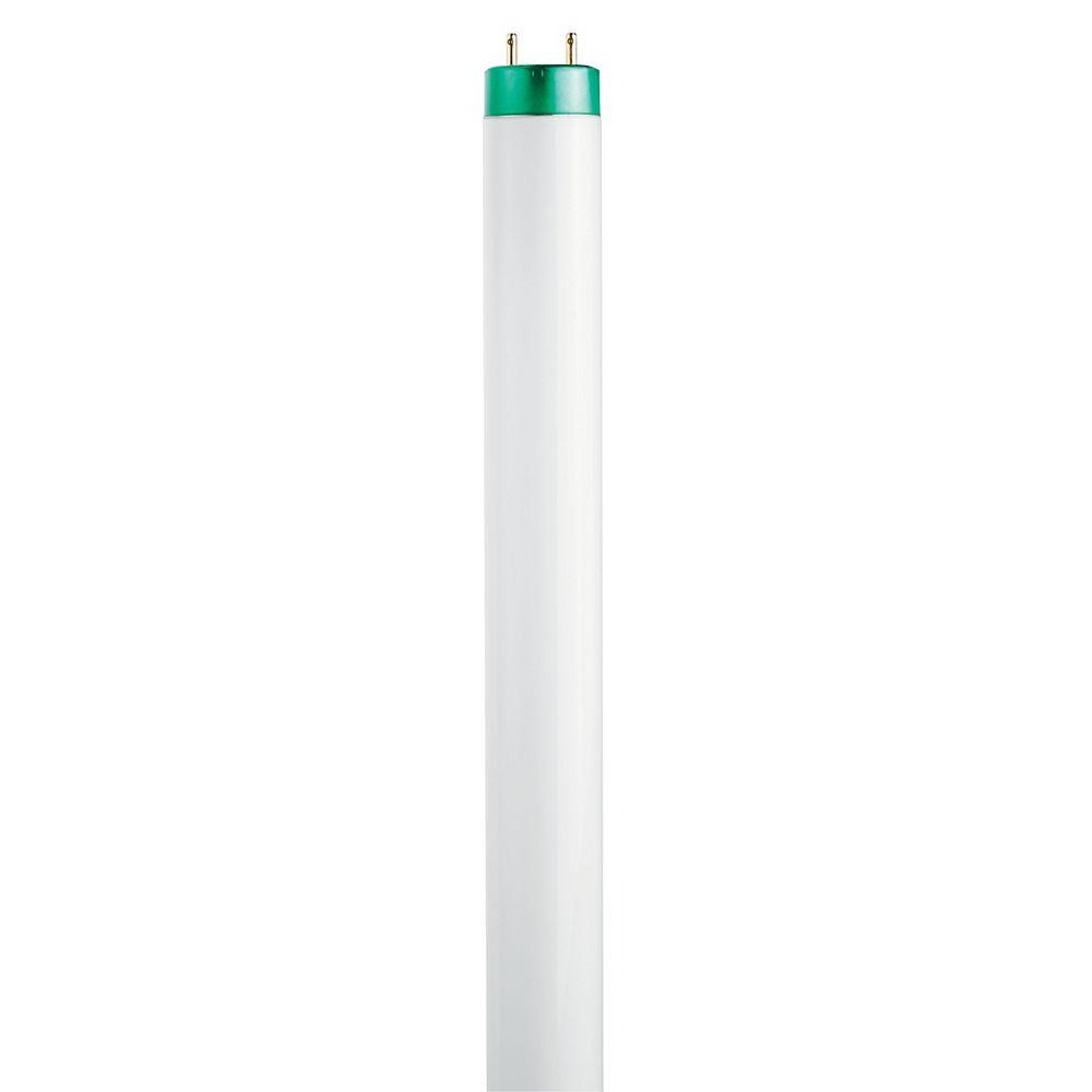 Philips Fluorescent Linéaire T8 15W 24 po Blanc froid (4100K)