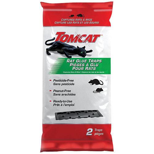 Plaque adhésive pour rats Tomcat