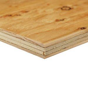 Sheathing Plywood