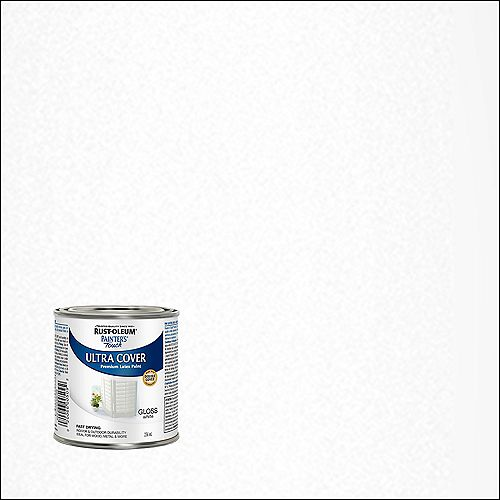 Painter's Touch Multi Purpose Paint In Gloss White, 236 mL