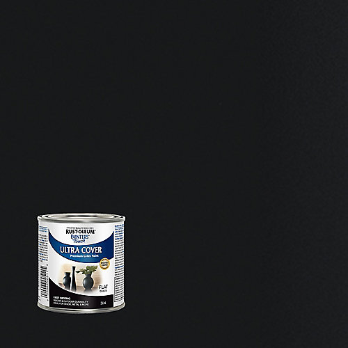 Peinture Tout Usage En Noir Mat - 236 Ml