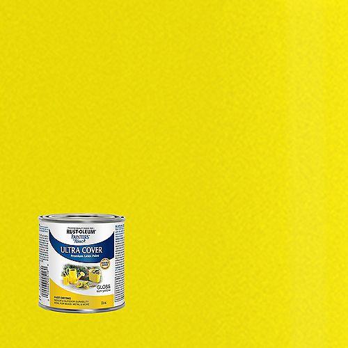 Peinture Multi Usages En Jaune Soleil Lustré - 236 mL
