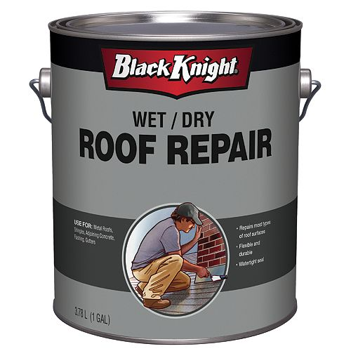 4 kg Wet/Dry Roof Repair
