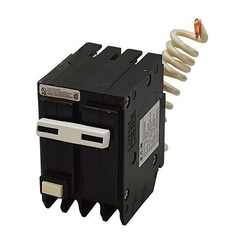 Disjoncteur GFCI à 2 pôles de type BR de 15 A avec auto-évaluation