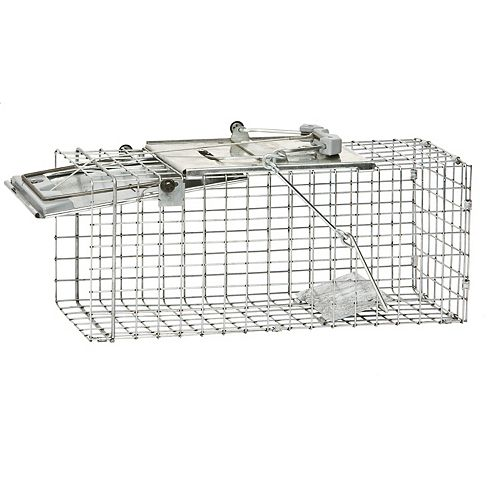 Easy Set Medium 1-Door Animal Trap