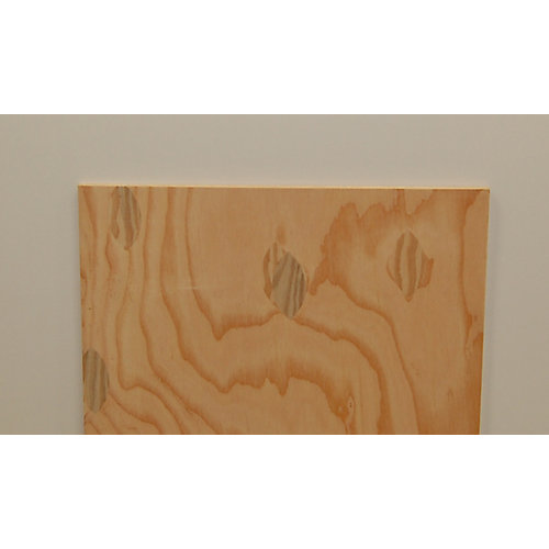1/2 Inch  2 Feet x 2 Feet Sanded 1-side Douglas Fir Plywood Handy Panel