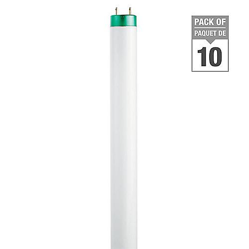 32WDaylight48 inch T8 FluorescentLight Bulb (10-pack)