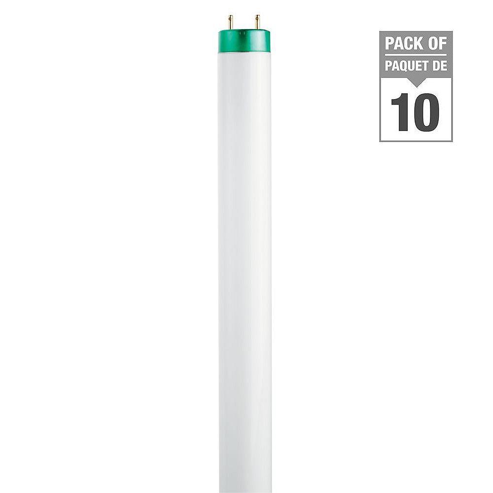 Philips 32WDaylight48 inch T8 FluorescentLight Bulb (10-pack)