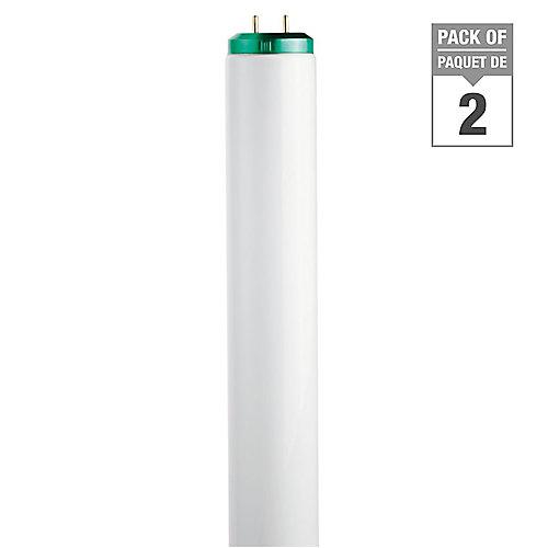 20W T12 24-inch Daylight (6500K) Fluorescent Light Bulb (2-Pack)