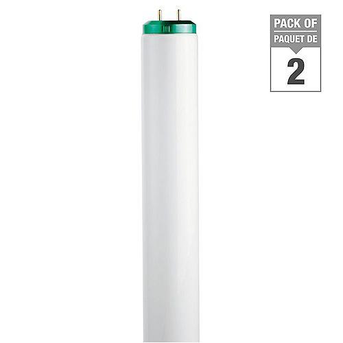 Philips Ampoule fluorescente T12, 24 po, 20 W, 6 500 K, lumière naturelle, ens. de 2