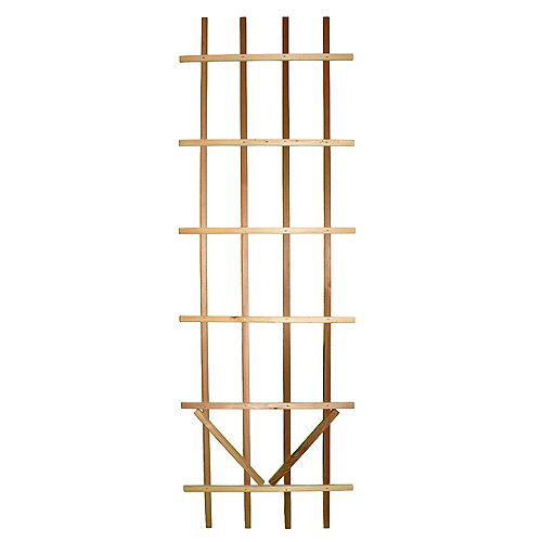 Premium Ladder 2 ft. x 6 ft. Trellis