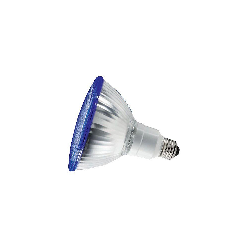 Philips 23W PAR38 réflecteur bleue