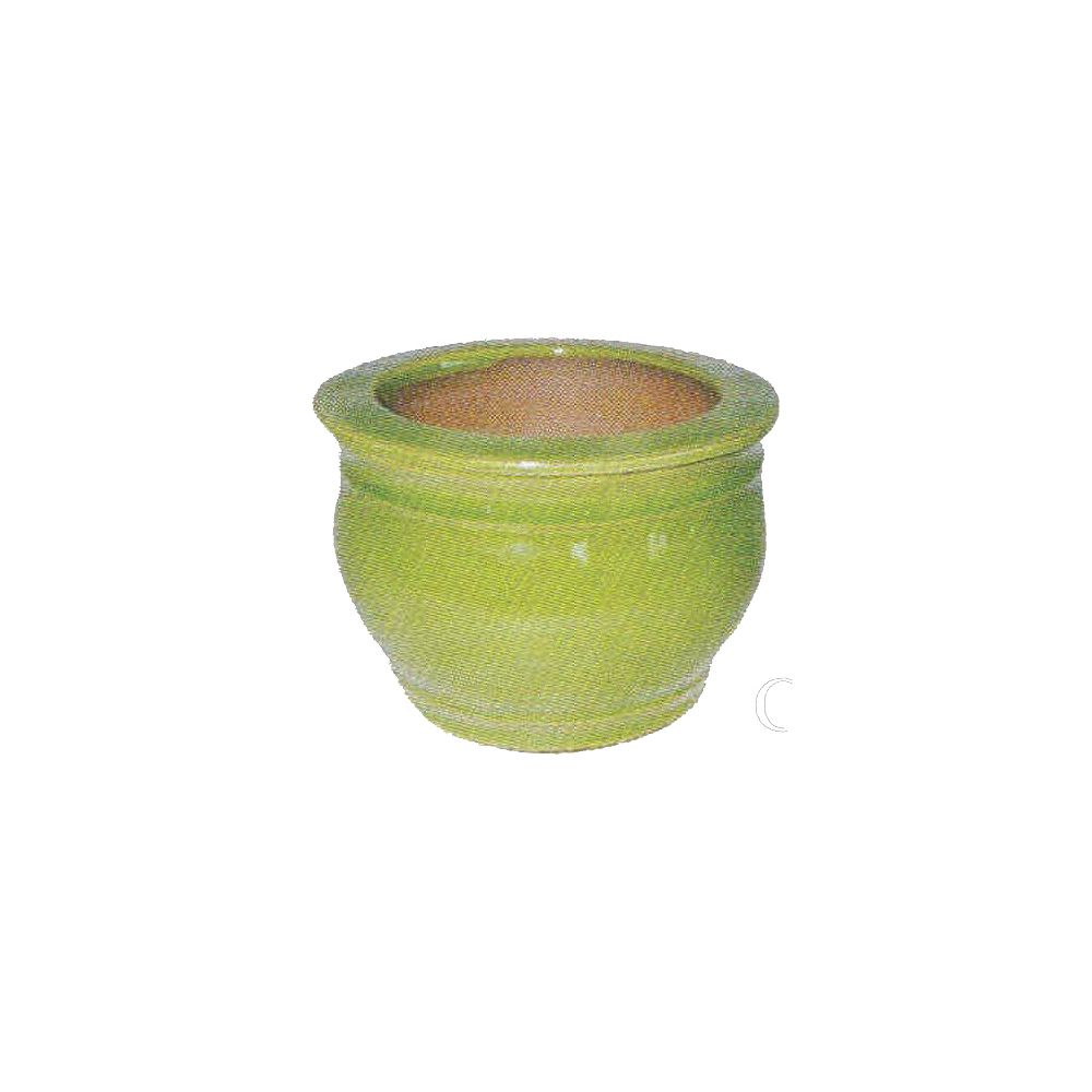 Grapevine Self Watering Pot - 6 Inches