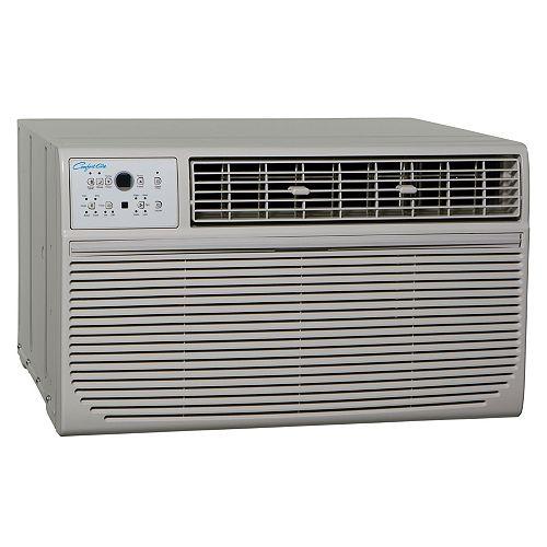 Thru-the-wall AC 14,000 BTU W remote 208-230V