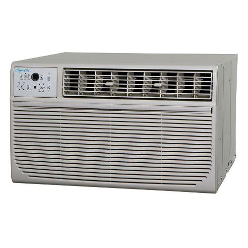 Thru-the-wall AC 10,000 BTU W remote 208-230V