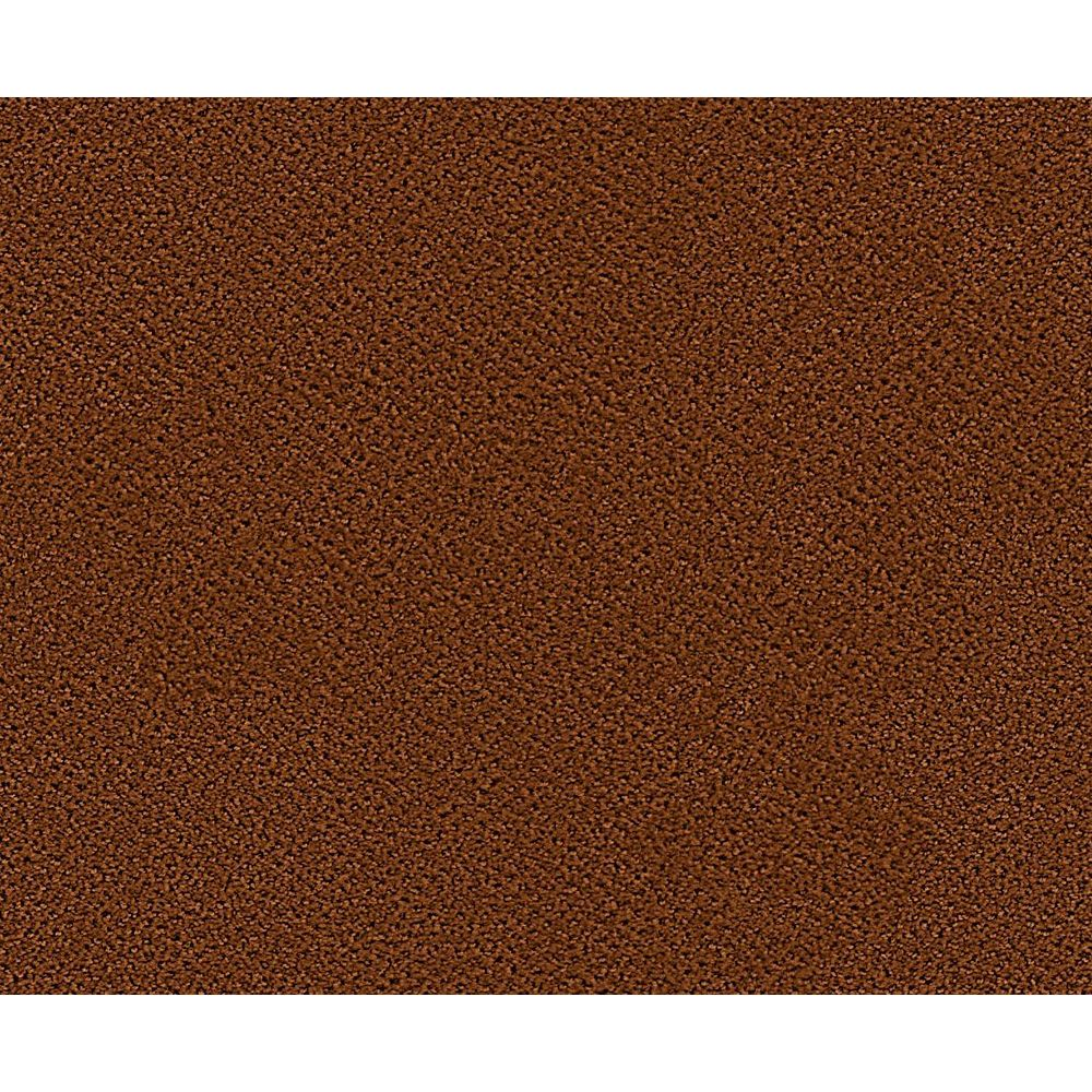 Beaulieu Canada Bayhem - Gingersnap Carpet - Per Sq. Feet