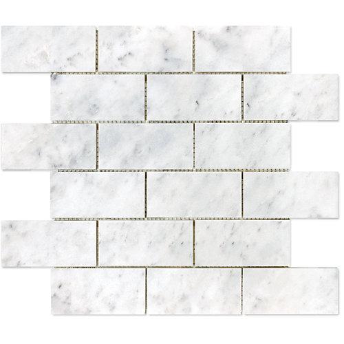 664214   Mosaïques en brique Bianco polies de 2po × 4po