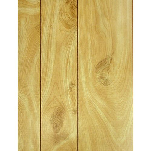 Honey Birch Paneling