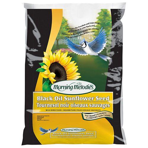 Morning Melodies Black Oil Sunflower 3.6Kg