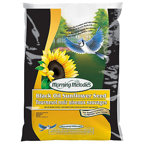 MORNING MELODIES BLACK OIL SUNFLOWER SEED 9.09KG