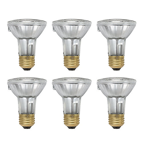 50W Halogen PAR20 Flood Light Bulb (6-Pack)