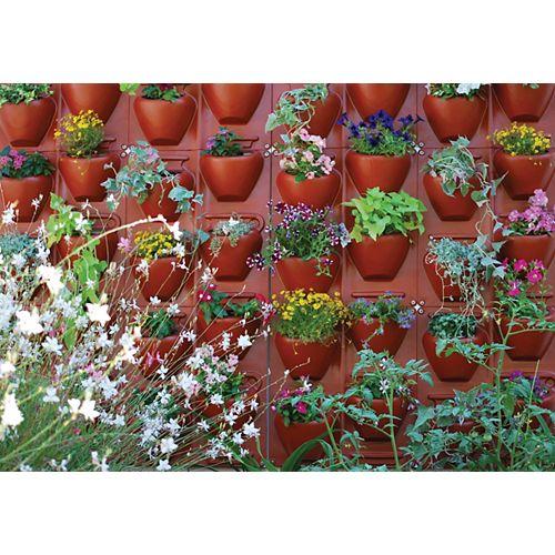 PlantScape - Jardin vertical - Fini terre