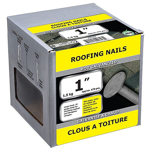 1-inch Roofing Nail-Hot Galvanized-1.5kg (approx. 670  pieces per package)