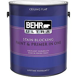 Stain Blocking Ceiling Paint, 3.79L