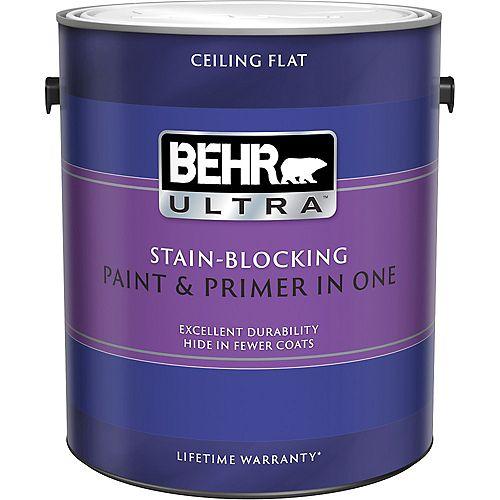 ULTRA Peinture bloque-taches pour plafonds, 3,79 L