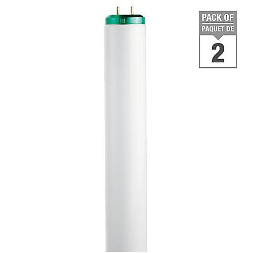 20W T12 24-inch Cool White (4100K) Fluorescent Light Bulb (2-Pack)
