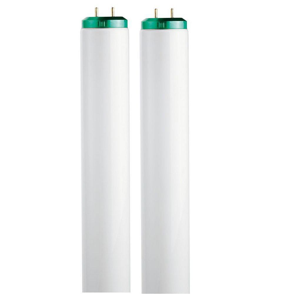 Philips Fluorescent Linéaire T12 30W 36 po Blanc froid (4100K) 2/paq.