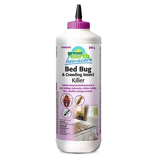 Punaises de lit poudre