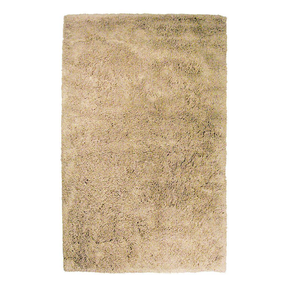 Lanart Rug Carpette d'intérieur, 5 pi x 8 pi, à poils longs, rectangulaire, havane Kashmir