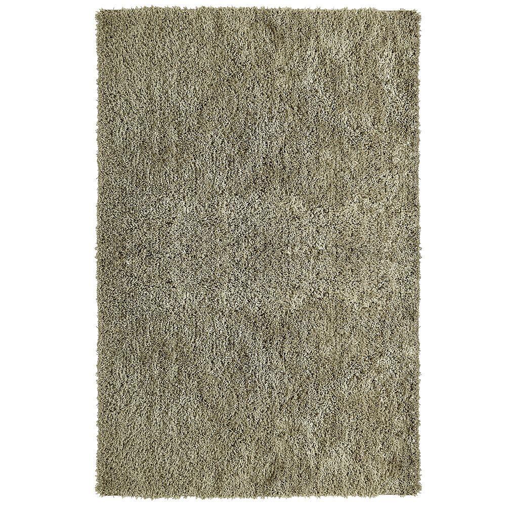 Lanart Rug Carpette d'intérieur, 9 pi x 10 pi, à poils longs, rectangulaire, havane Shag-ri-La