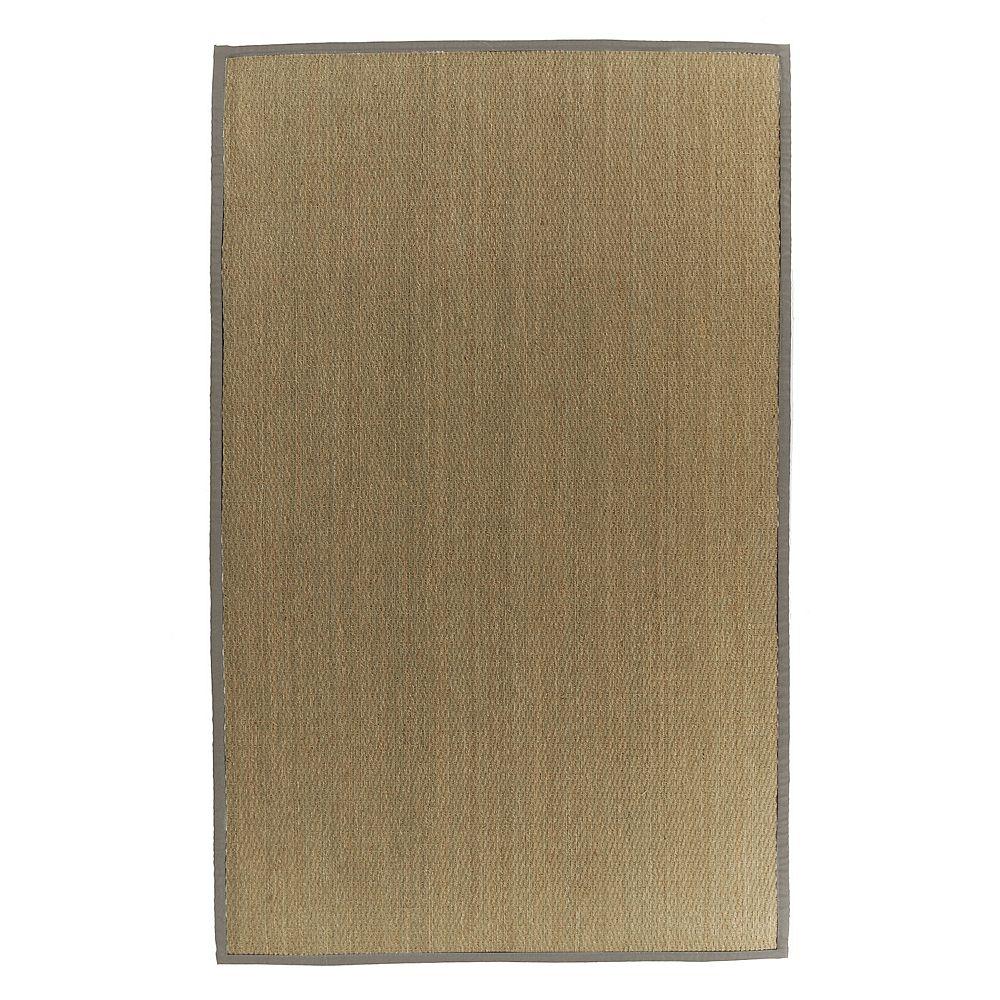 Lanart Rug Carpette d'intérieur, 4 pi x 6 pi, tissage texturé, rectangulaire, jonc de mer naturel, havane