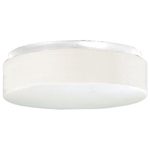 Hard-Nox Collection 2-Light White Outdoor Flushmount