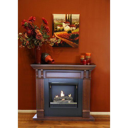 Whistler 23 In. Gel Fireplace - Cherry