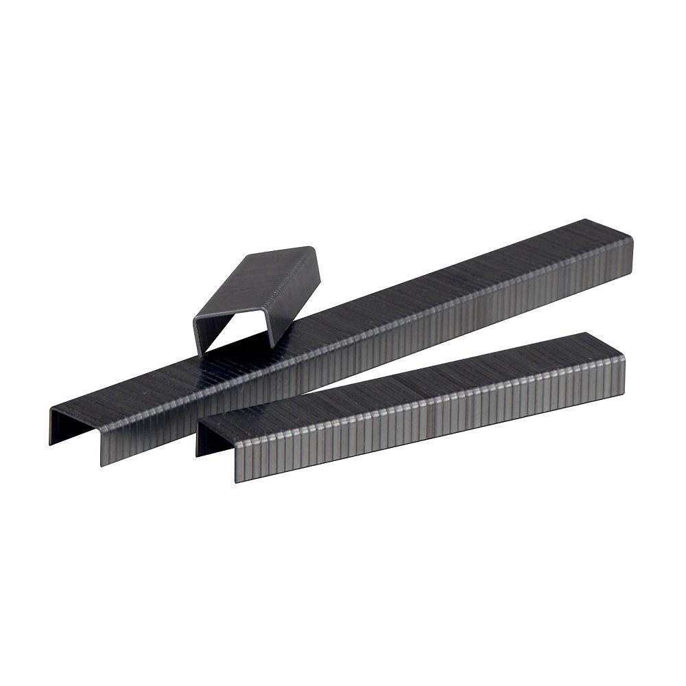 """MAKITA 1/4"""" (6 mm) x 3/8"""" Galvanized Staples (5040/box)"""