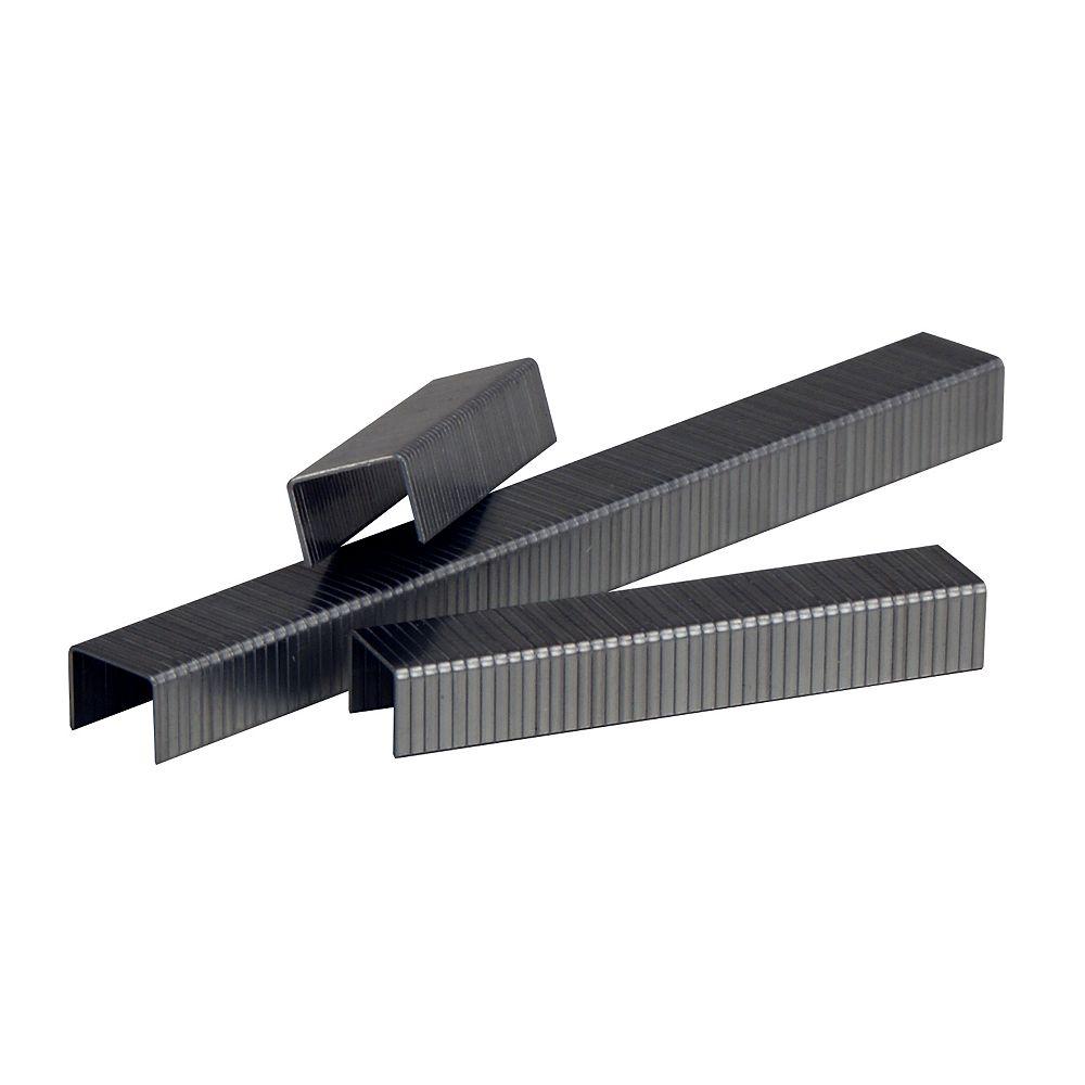 MAKITA Agrafes galvanisées 3/8 po (10 mm) x 3/8 po (5040/boîte)