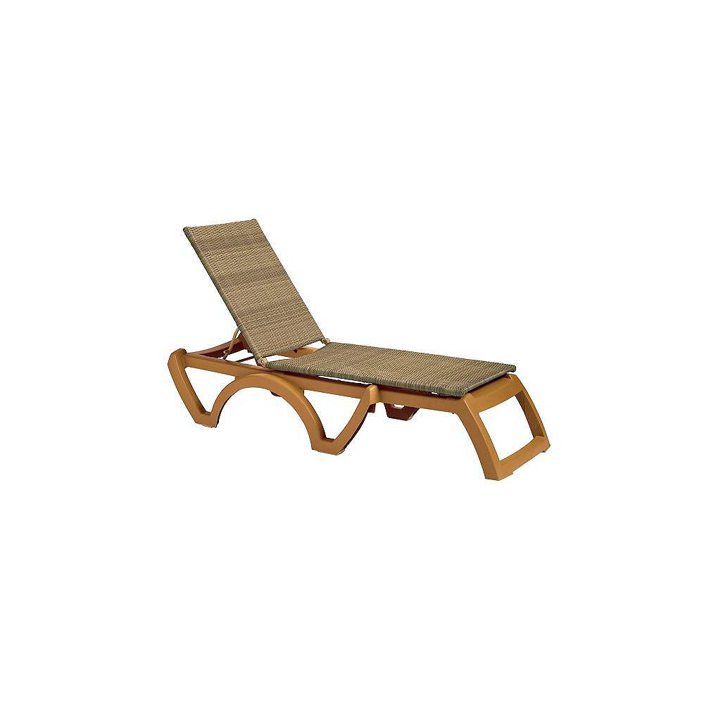 Espace Maison Java Wicker Outdoor Chaise in Honey (2-Piece)