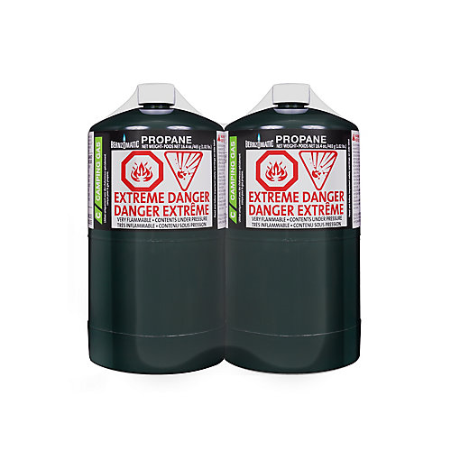 16.4 OZ BZO CAMPING GAS (2-Pack)