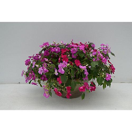 12-inch Planter
